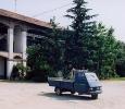 1226-06.15 Casc.Lina anno 2005