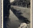 1185-anno-1951-04-12